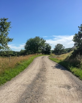 Pionowe ujęcie drogi gruntowej pośrodku trawiastych pól i drzew w szwecji