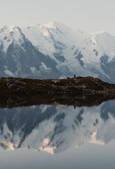 Pionowe ujęcie francuskich alp odbijających się w wodzie