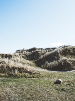 Pionowe ujęcie gór pokrytych zielenią w słońcu