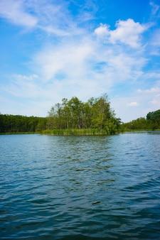 Pionowe ujęcie jeziora rusałka