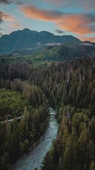 Pionowe ujęcie lasu z rzeką i zielonymi górami z pochmurnym niebem