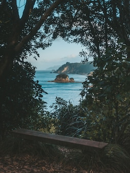 Pionowe ujęcie ławki otoczonej drzewami i roślinami z widokiem na morze i oddaloną skałę