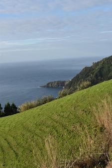 Pionowe ujęcie morza uchwyconego pod dużym kątem w ciągu dnia z porośniętego drzewami wzgórza
