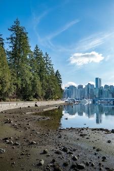 Pionowe ujęcie odbić wieżowców w jeziorze stanley park w vancouver