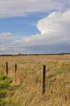 Pionowe ujęcie pięknego złotego pola z ogrodzeniem z drutu uchwyconego w słoneczny dzień
