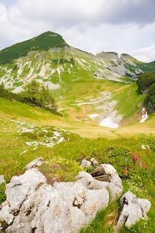 Pionowe ujęcie pięknych austriackich wzgórz pod pochmurnym niebem