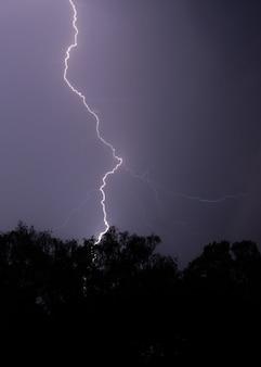 Pionowe ujęcie pioruna uderzającego w drzewo w nocy z fioletowym niebem i drzewami z przodu