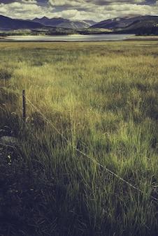 Pionowe ujęcie pola z jeziorem otoczonym górami w środku