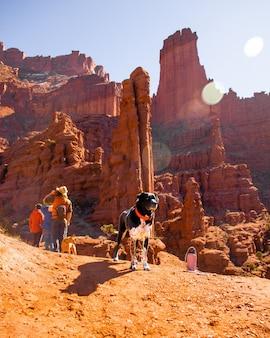 Pionowe ujęcie psa z czerwoną smyczą stojący w pobliżu ludzi i opuszczonych klifów w tle