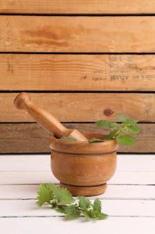 Pionowe ujęcie rośliny używanej w medycynie pokrzywy