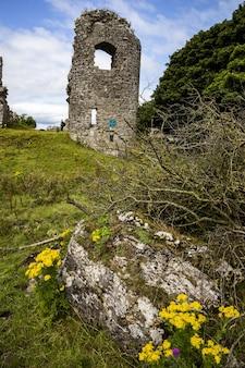 Pionowe ujęcie ruin klasztoru w hrabstwie mayo, republika irlandii