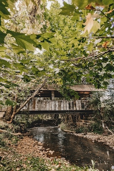 Pionowe ujęcie rzeki płynącej pod zadaszonym mostem z widocznymi zielonymi liśćmi