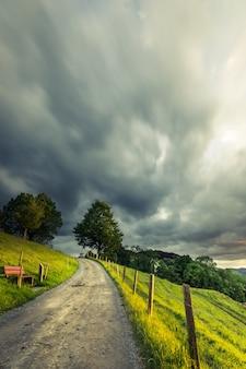 Pionowe ujęcie ścieżki w środku trawiastego pola z drzewami pod zachmurzonym niebem