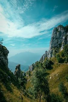 Pionowe ujęcie trawiastych wzgórz z drzewami i górami w oddali