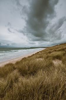 Pionowe ujęcie trawy pokrytej plaży przez spokojny ocean zrobione w kornwalii w anglii
