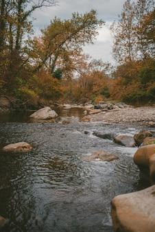Pionowe ujęcie wielu skał w rzece otoczonej pięknymi drzewami pod chmurami burzowymi