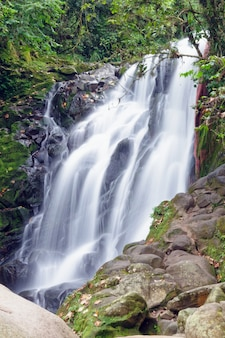 Pionowe ujęcie wodospadu w ciągu dnia
