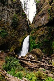 Pionowe ujęcie wodospadu wahclella falls w usa