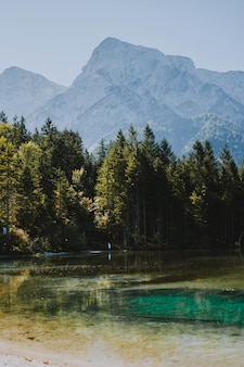 Pionowe ujęcie zamarzniętego jeziora świecącego pod ciepłym słońcem otoczonym drzewami i górami