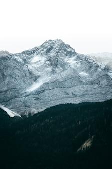 Pionowe ujęcie zielonego lasu otoczonego białymi górami