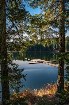 Pionowe ujęcie zielonej scenerii odbijającej się w lost lake w whistler bc kanada