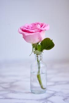 Pionowe zbliżenie strzał pięknej różowej róży w małym szklanym słoju
