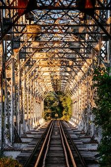 Pionowe zdjęcie tajemniczo opuszczonej linii kolejowej pośród kwitnącego lasu