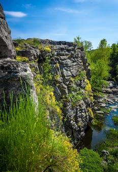 Pionowe zdjęcie wysokiego klifu na rzece porośniętej kwiatami i trawą