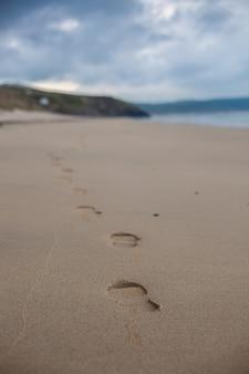 Pionowo selekcyjny ostrość strzelał piaskowata plaża pod jasnym niebem w cornwall, anglia