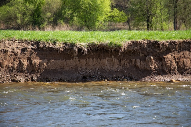 Pionowy brzeg rzeki ze stromą ścianą ziemi nadającą się do gniazdowania zimorodka