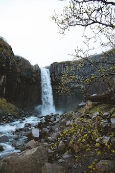 Pionowy niski kąt strzału z pięknym wodospadem na skalistych klifach, zrobiony na islandii