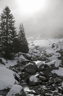 Pionowy obraz pokrytej śniegiem rzeki z wieloma kamieniami i skałami oraz sosnami na boku