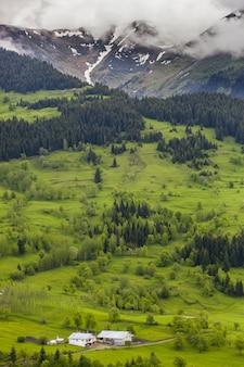 Pionowy obraz wzgórz pokrytych lasami i mgłą pod zachmurzonym niebem w ciągu dnia