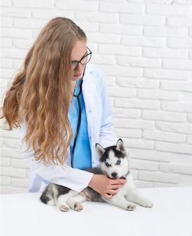 Pionowy portret kobiety weterynarza bada małego szczeniaka husky za pomocą stetoskopu.