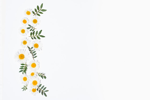 Pionowy zestaw kwiatów