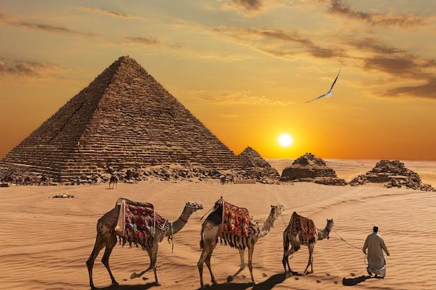 Piramida menkaure i trzej towarzysze piramidy, wielbłądy i beduini na pustyni.