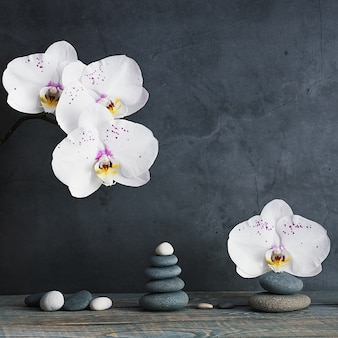 Piramida z kamieni i kwiatów orchidei na jasnoszarym tle