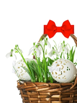 Pisanki i wiosenne kwiaty przebiśniegi w koszu z czerwoną wstążką łuk na białym tle