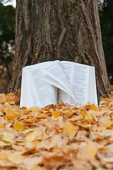 Pismo święte otwarte w psalmach na pniu drzewa, a strony przewracane na wietrze jesienią japonii z opadłymi żółtymi liśćmi. strzał w pionie.