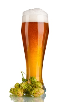 Piwo w szklance i zielony chmiel na białym tle