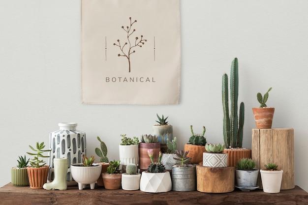 Plakat na płótnie wiszący nad półką pełną kaktusów i sukulentów