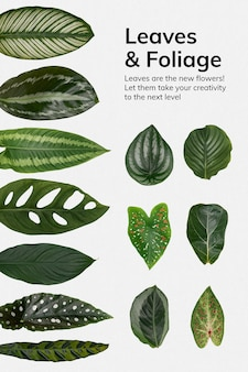 Plakat z liśćmi i liśćmi