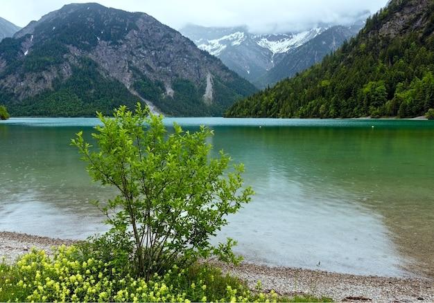Plansee lato krajobraz ze śniegiem na zboczu góry i kwiat z przodu. pochmurny dzień. (austria).