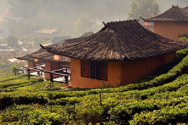 Plantacja herbaty i wioska w ban rak thai, popularnej atrakcji turystycznej. prowincja mae hong son, północ tajlandii.