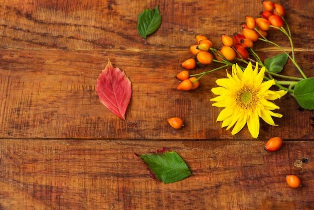 Płaska kompozycja z owocami dzikiej róży, liśćmi i słonecznikiem na drewnianym stole. przytulna jesień, czyli koncepcja zimowego wypoczynku. miejsce na tekst, ramkę, widok z góry, miejsce kopiowania, układ