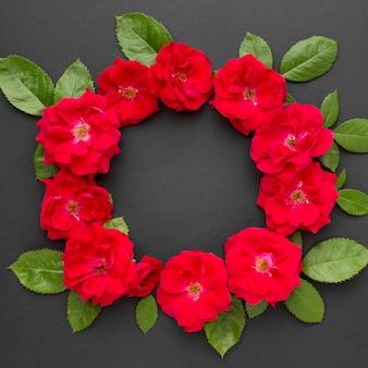 Płaska korona róż lodowych