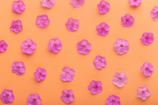 Płaski asortyment kwiatów