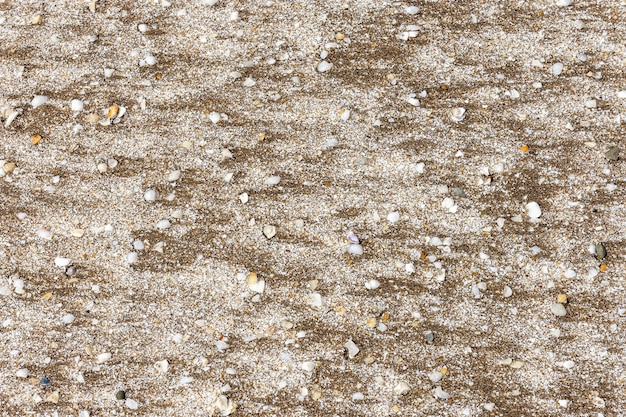 Płaski piasek na plaży