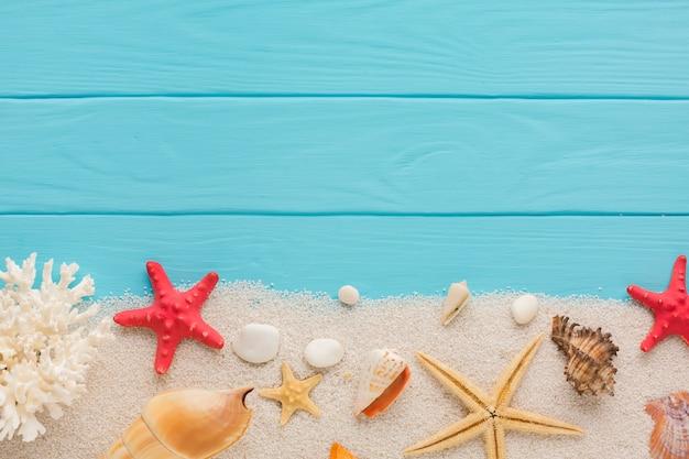 Płaski skład piasku i muszelek