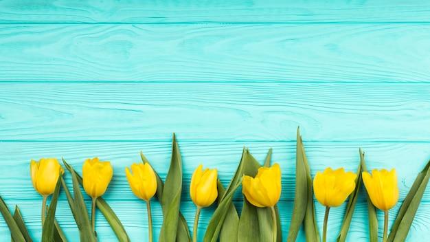 Płaski świecki skład kwiatów z copyspace